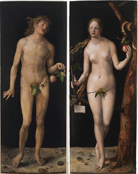 477px-Albrecht_Dürer_-_Adam_and_Eve_(Prado)_2